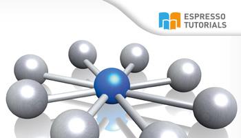 IT-Projektmanagement im SAP Solution Manager