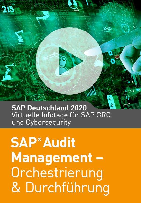 SAP Audit Management Orchestrierung & Durchführung