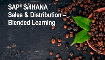 SAP S/4HANA Sales & Distribution
