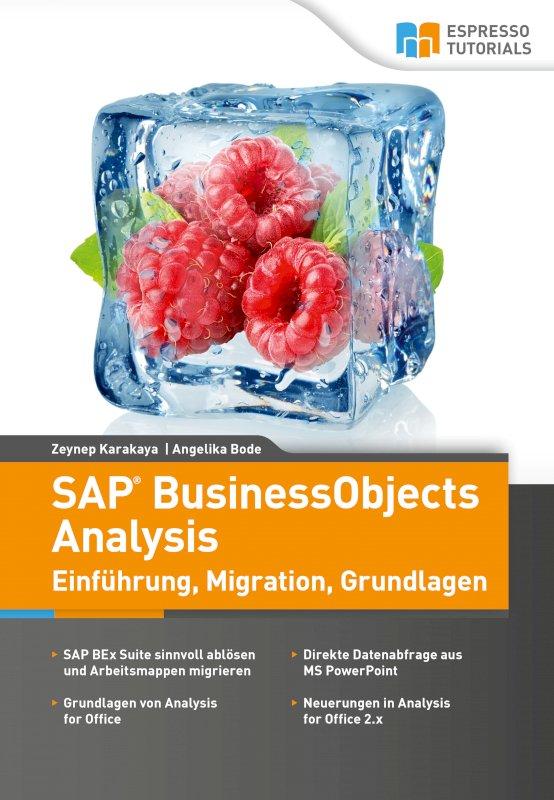 SAP BusinessObjects Analysis – Einführung, Migration, Grundlagen