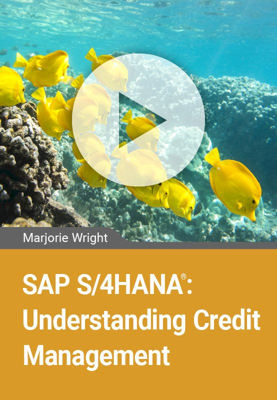 SAP S/4HANA: Understanding Credit Management