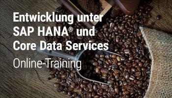Entwicklung unter SAP HANA und Core Data Services